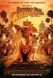 Alle Infos zu Beverly Hills Chihuahua