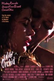 Alle Infos zu Wilde Orchidee