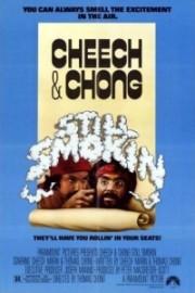 Alle Infos zu Cheech & Chong - Jetzt raucht überhaupt nichts mehr