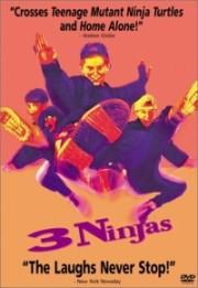 Alle Infos zu 3 Ninja Kids