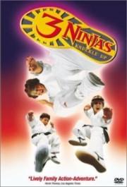 Alle Infos zu 3 Ninjas Fight & Fury