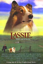 Lassie geht eigene Wege