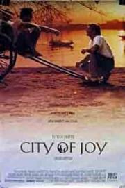 Stadt der Freude
