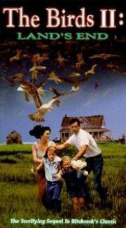 Die Vögel 2 - Die Rückkehr