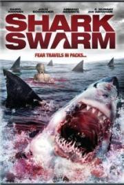 Alle Infos zu Shark Swarm
