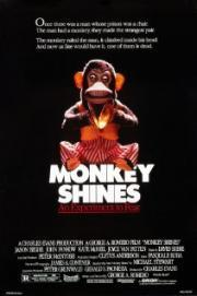 Alle Infos zu Der Affe im Menschen