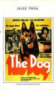 Alle Infos zu The Dog