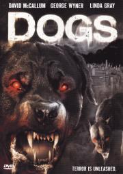 Alle Infos zu Killerhunde