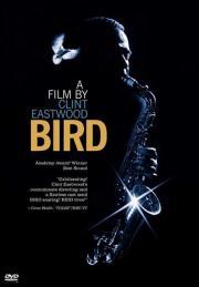 Alle Infos zu Bird