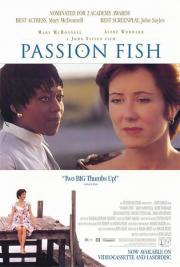 Passion Fish - Ein Meer der Gefühle