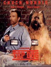 Alle Infos zu Top Dog