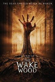 Alle Infos zu Wake Wood