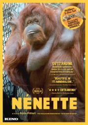 N�nette