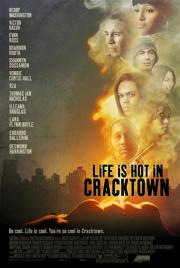 Alle Infos zu Life Is Hot in Cracktown
