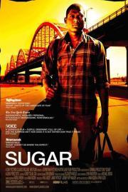 Alle Infos zu Sugar