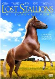 Alle Infos zu Lost Stallions - The Journey Home