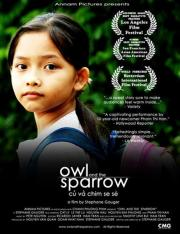 Alle Infos zu Owl and the Sparrow