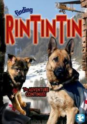 Alle Infos zu Rin Tin Tin
