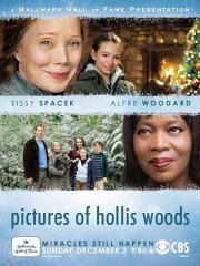 Alle Infos zu Pictures of Hollis Woods