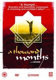 Tausend Monate