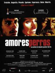 Amores perros - Was ist Liebe?