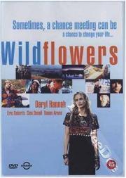 Wildflowers - Geheimnisvoller Sommer