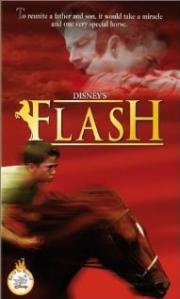 Mein Freund Flash