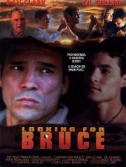 Looking for Bruce