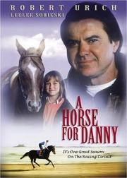 Alle Infos zu Ein Pferd für Danny