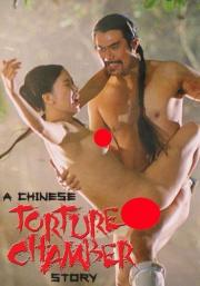 Alle Infos zu A Chinese Torture Chamber Story