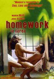 Die Hausaufgabe