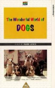 Alle Infos zu The Wonderful World of Dogs