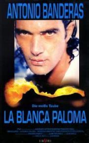 La Blanca Paloma - Die weiße Taube