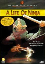 Die Rache des Ninja