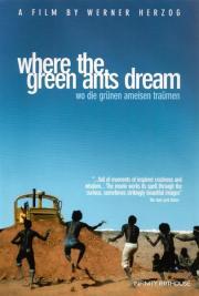 Alle Infos zu Wo die grünen Ameisen träumen