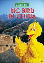 Big Bird in China