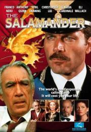 Alle Infos zu Kennwort - Salamander