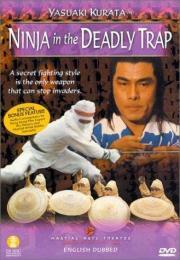 Der Clan der Ninja