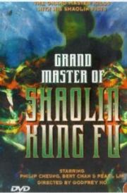 Grandmaster of Shaolin Kung Fu