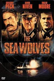 Die Seewölfe kommen