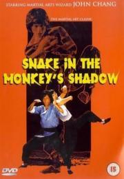 2 tödliche Fäuste im Schatten der Schlange