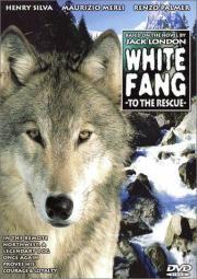 Wolfsblut greift ein