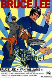Das Geheimnis der grünen Hornisse