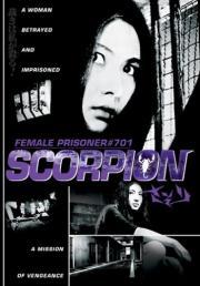 Sasori - Scorpion
