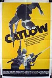 Alle Infos zu Catlow - Leben ums Verrecken