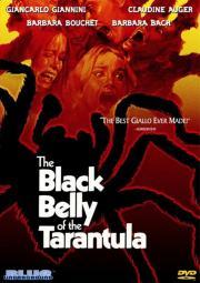 Der Schwarze Leib der Tarantel