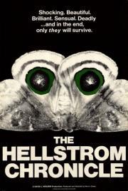 Die Hellstrom Chronik