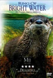 Mein Freund, der Otter