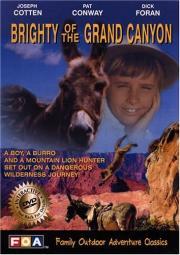 Abenteuer im Grand Canyon