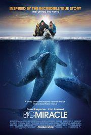 Alle Infos zu Der Ruf der Wale